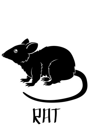 Rat people - socially intelligent creatures | Althea Feng Shui
