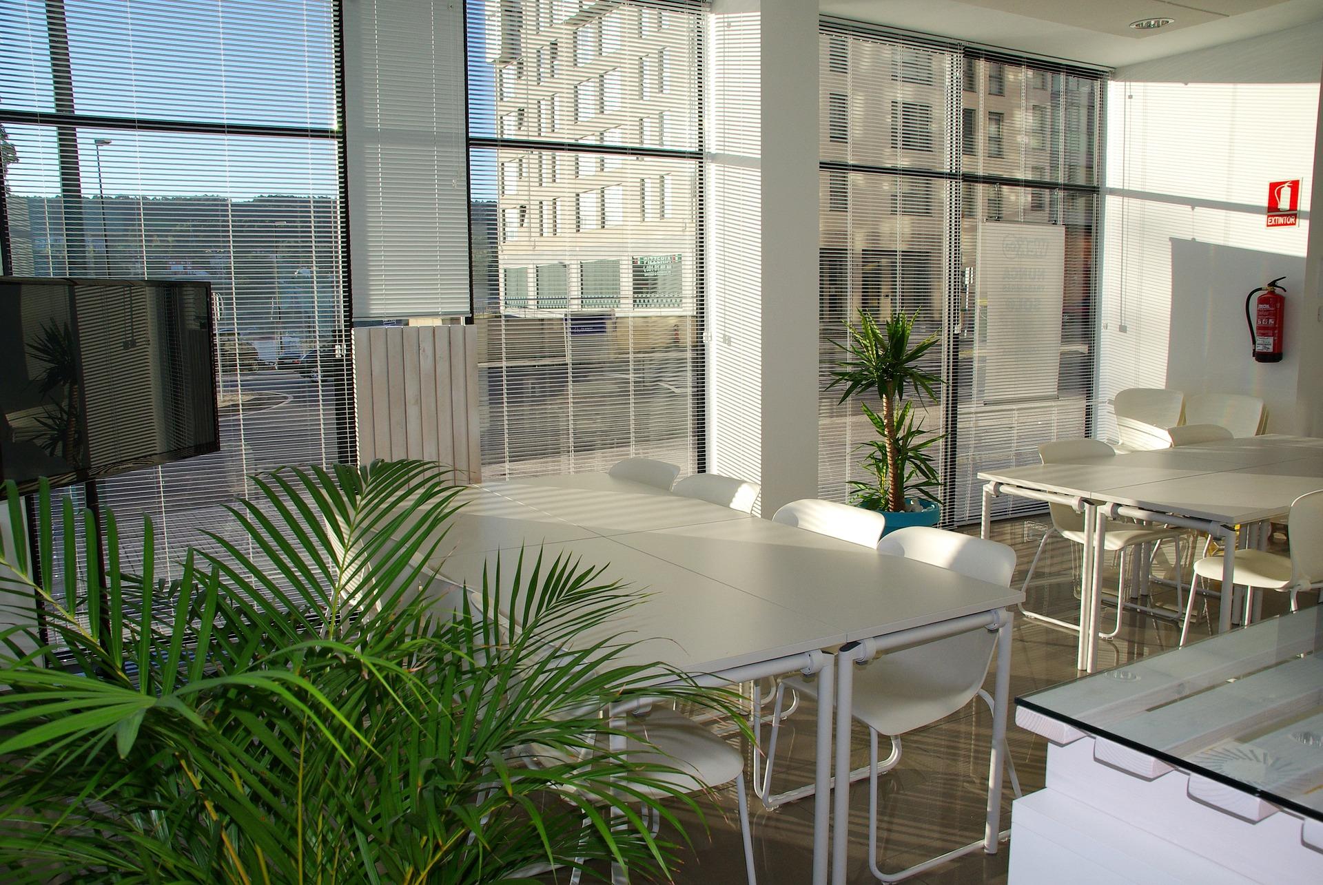 Althea Feng Shui office-space